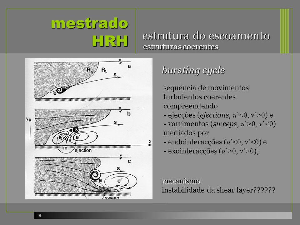 mestrado HRH estrutura do escoamento bursting cycle