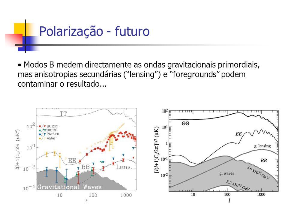 Polarização - futuro