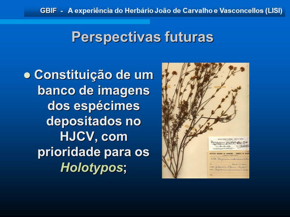 Perspectivas futuras Constituição de um banco de imagens dos espécimes depositados no HJCV, com prioridade para os Holotypos;
