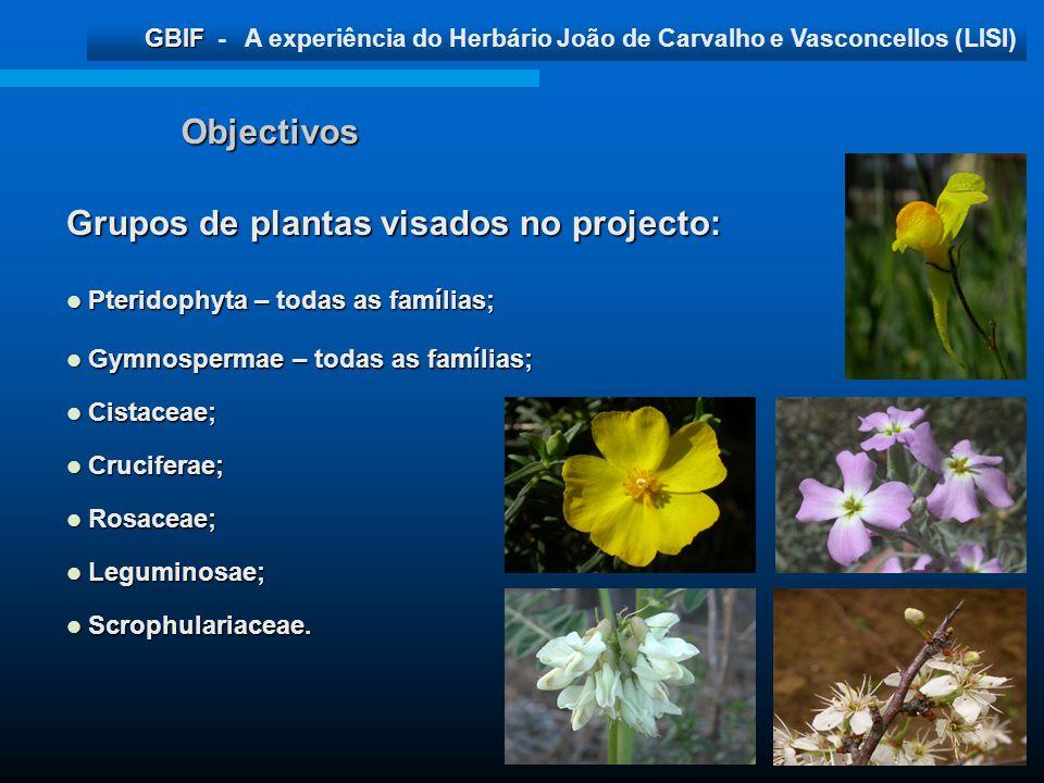 Grupos de plantas visados no projecto: