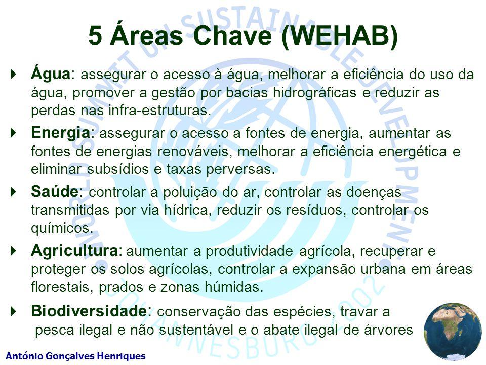 5 Áreas Chave (WEHAB)