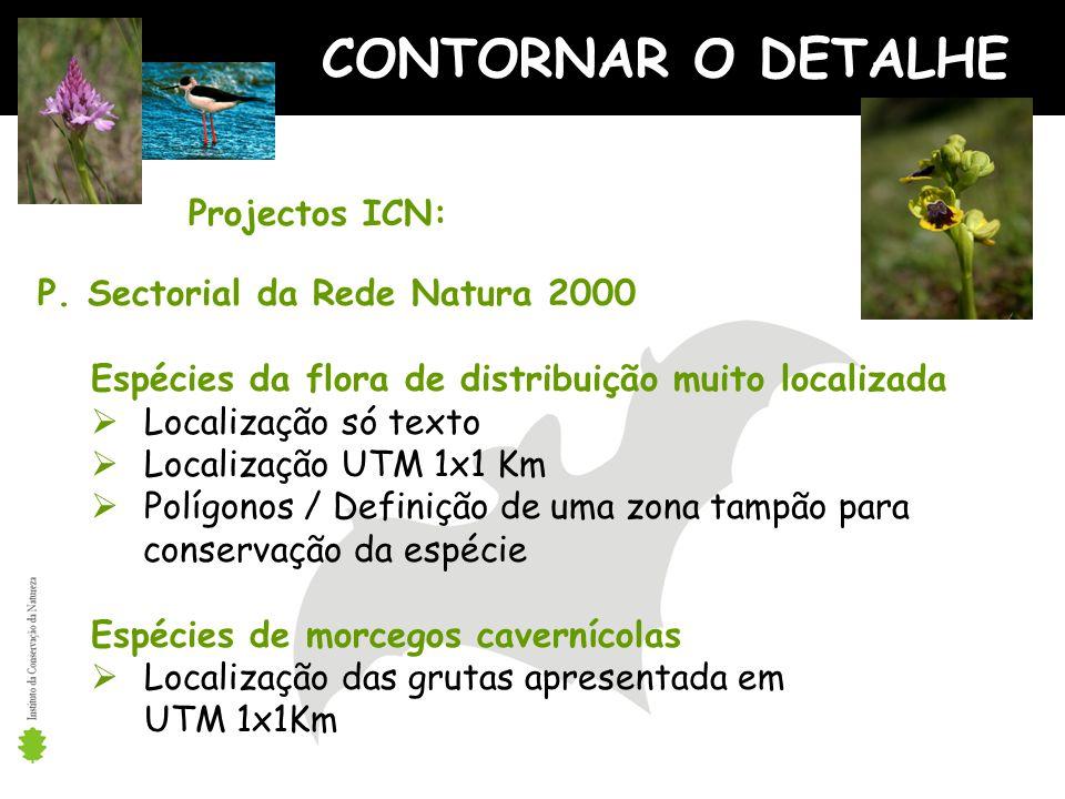 CONTORNAR O DETALHE Projectos ICN: P. Sectorial da Rede Natura 2000