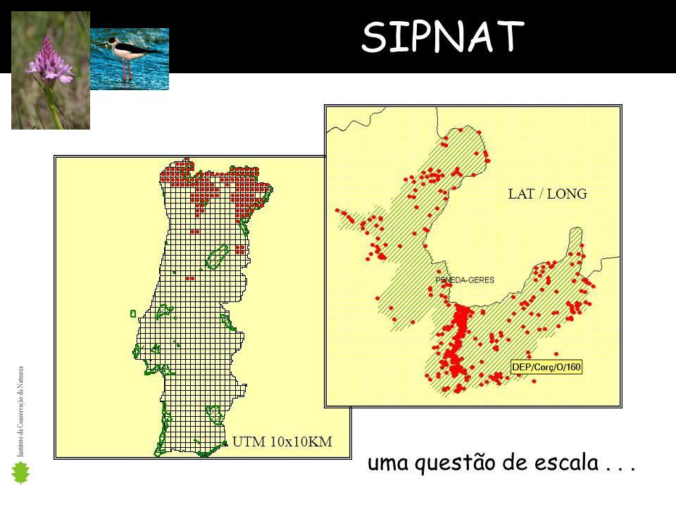 SIPNAT LAT / LONG UTM 10x10KM uma questão de escala . . .