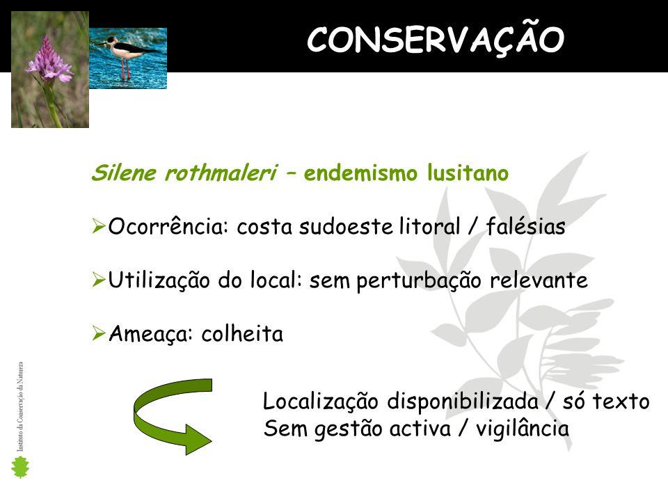 CONSERVAÇÃO Silene rothmaleri – endemismo lusitano