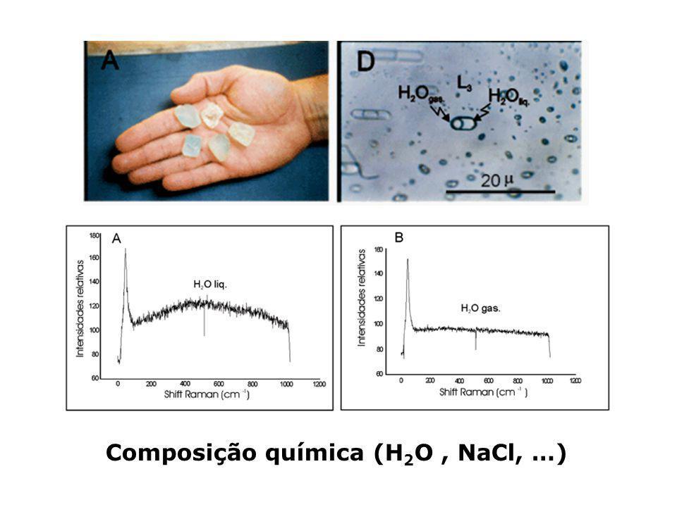 Composição química (H2O , NaCl, …)