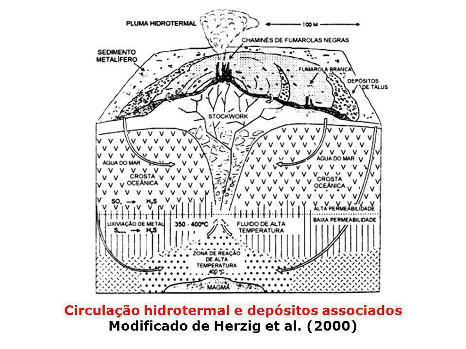 Circulação hidrotermal e depósitos associados