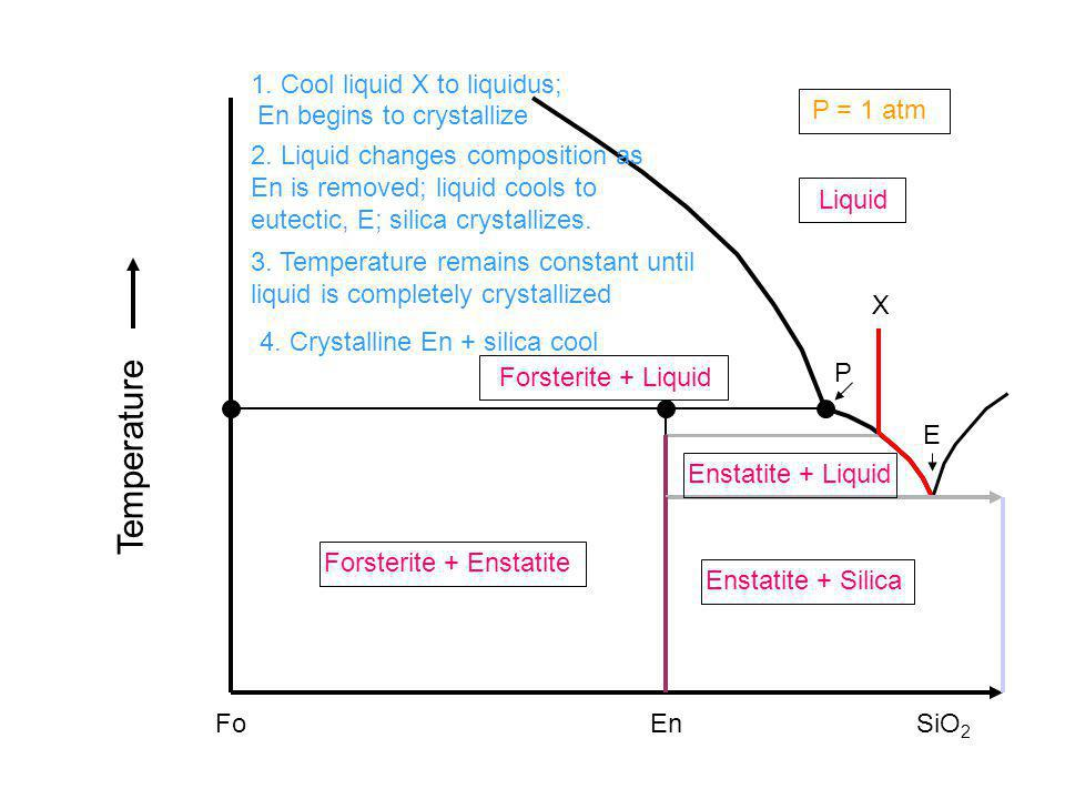 Temperature 1. Cool liquid X to liquidus; En begins to crystallize