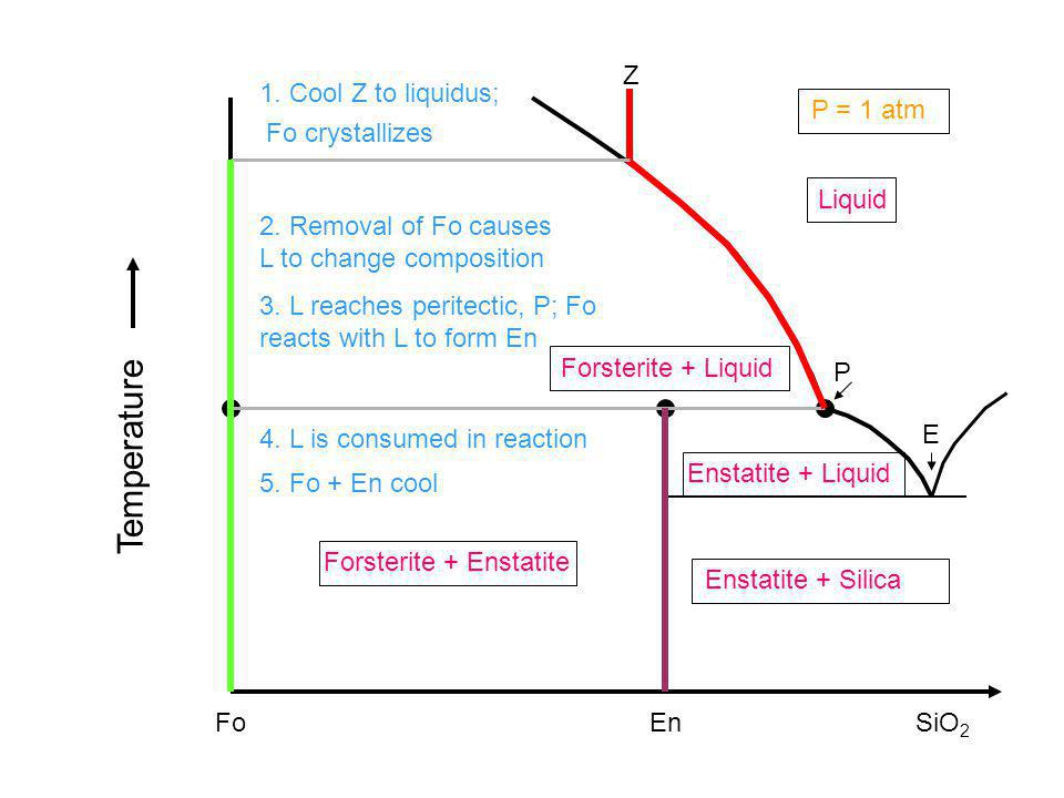 Temperature Z 1. Cool Z to liquidus; P = 1 atm Fo crystallizes Liquid