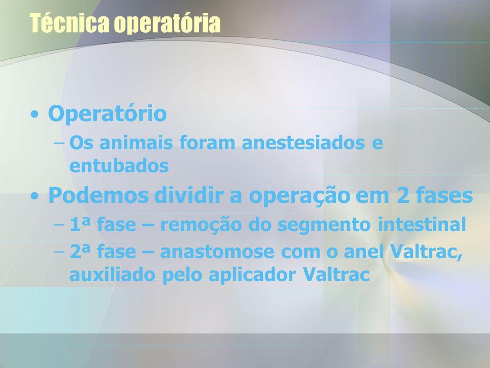 Técnica operatória Operatório Podemos dividir a operação em 2 fases