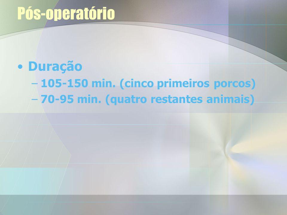 Pós-operatório Duração 105-150 min. (cinco primeiros porcos)
