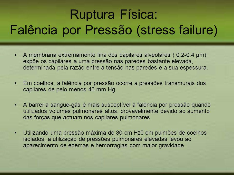 Ruptura Física: Falência por Pressão (stress failure)