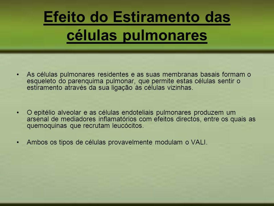 Efeito do Estiramento das células pulmonares