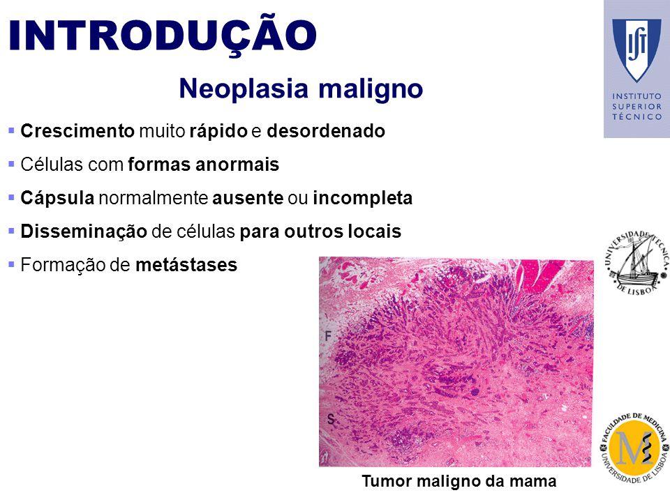 INTRODUÇÃO Neoplasia maligno Crescimento muito rápido e desordenado