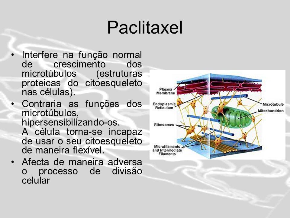 Paclitaxel Interfere na função normal de crescimento dos microtúbulos (estruturas proteicas do citoesqueleto nas células).