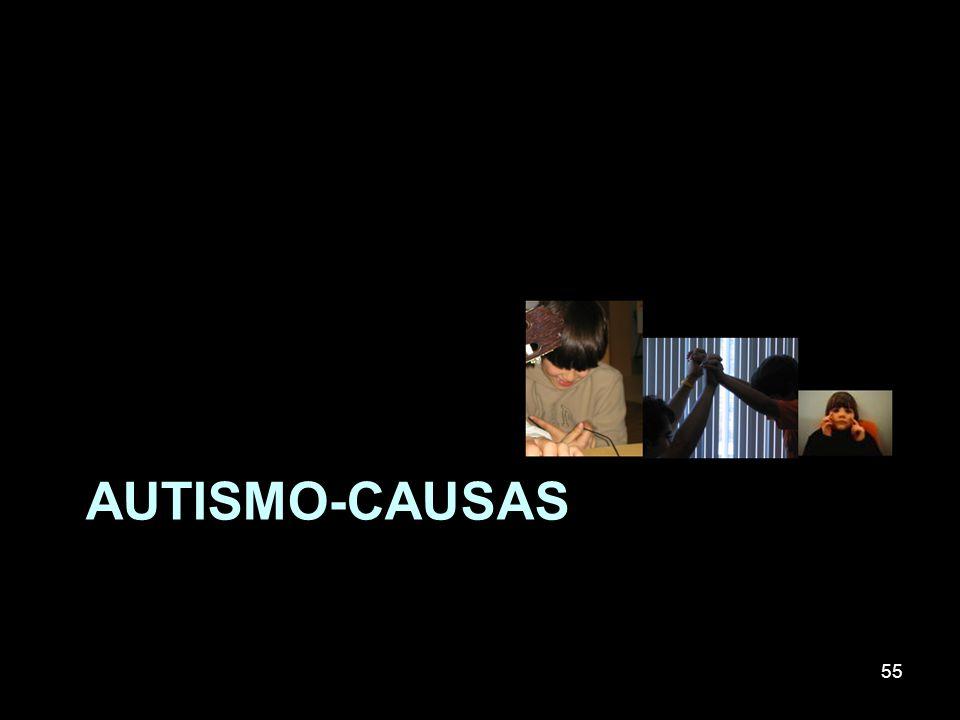 AUTISMO-causas