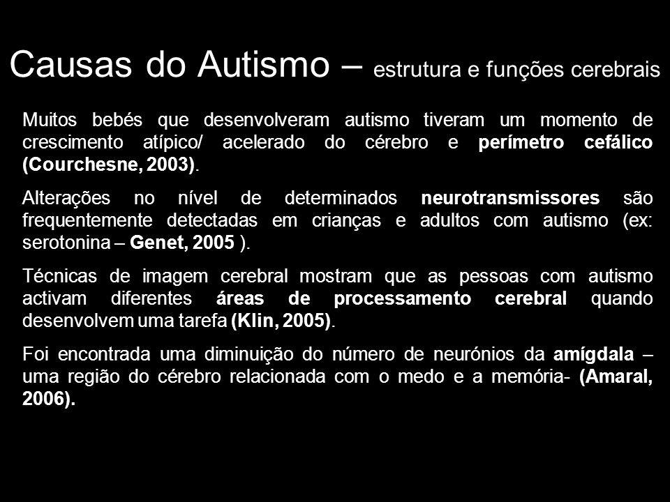Causas do Autismo – estrutura e funções cerebrais