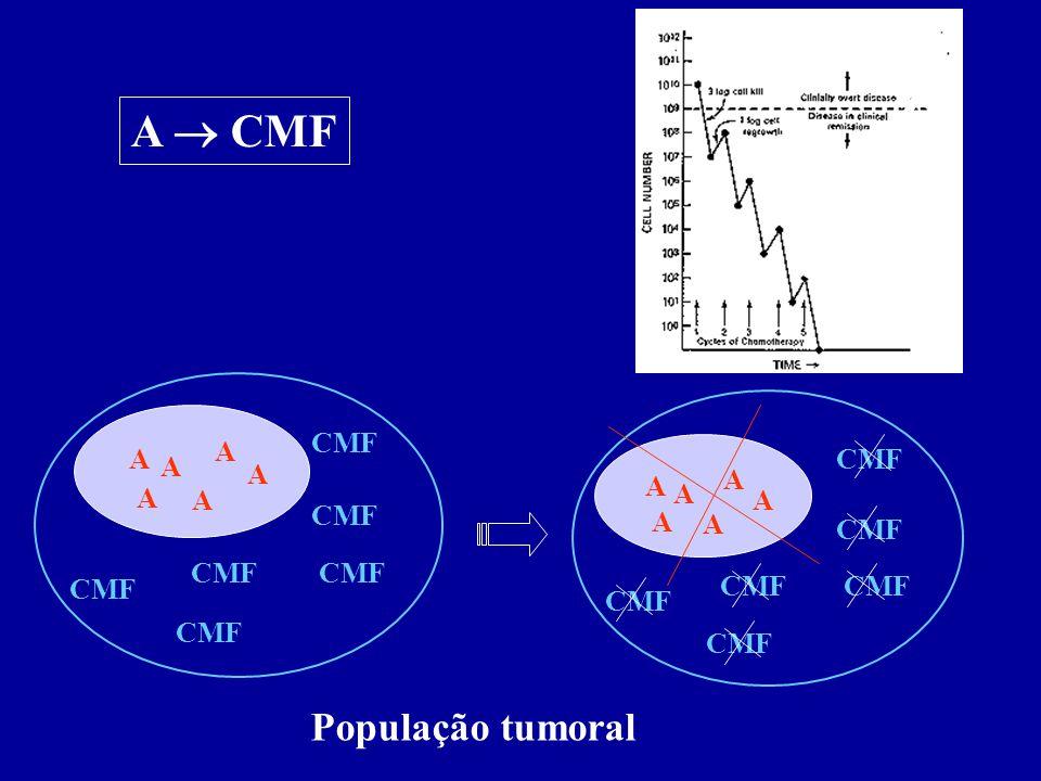 A  CMF A CMF CMF A População tumoral