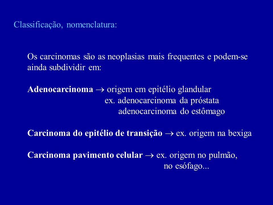 Classificação, nomenclatura: