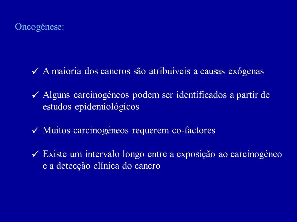 Oncogénese:  A maioria dos cancros são atribuíveis a causas exógenas. Alguns carcinogéneos podem ser identificados a partir de.