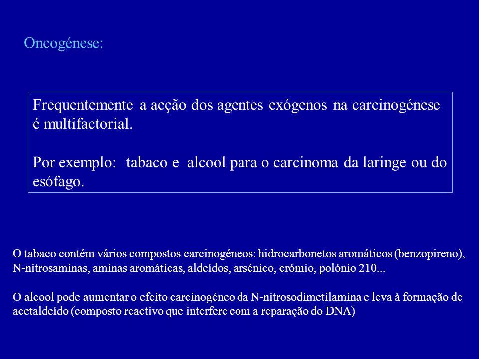 Frequentemente a acção dos agentes exógenos na carcinogénese
