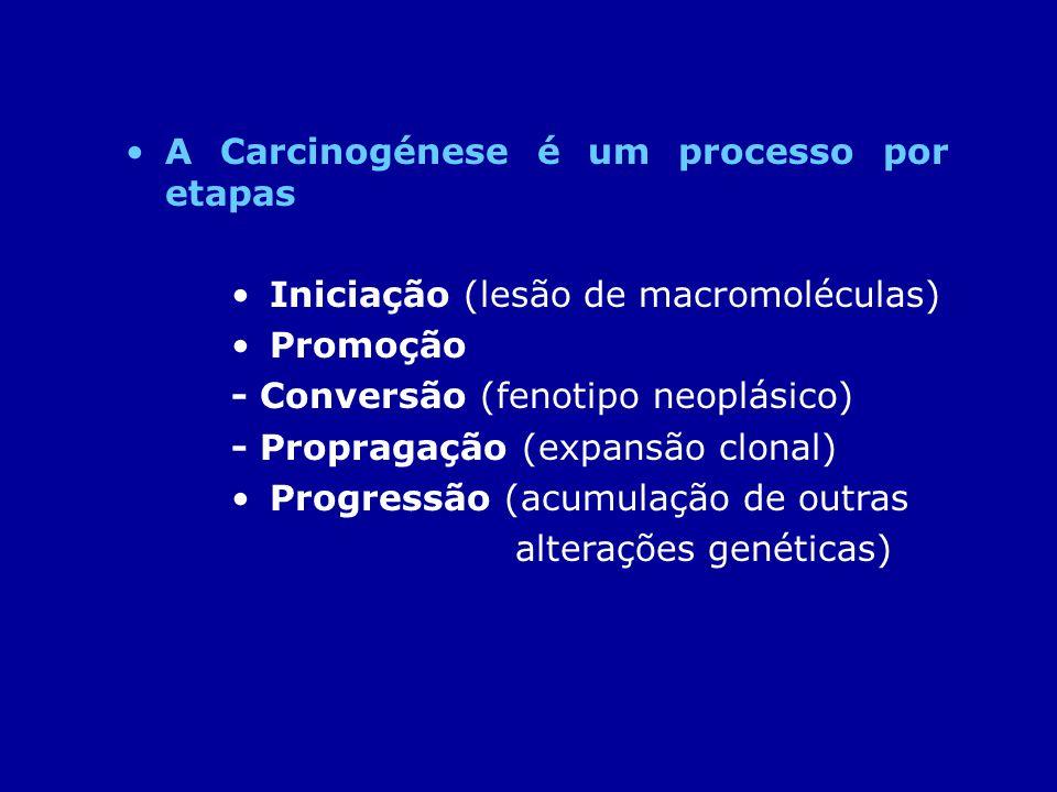 A Carcinogénese é um processo por etapas