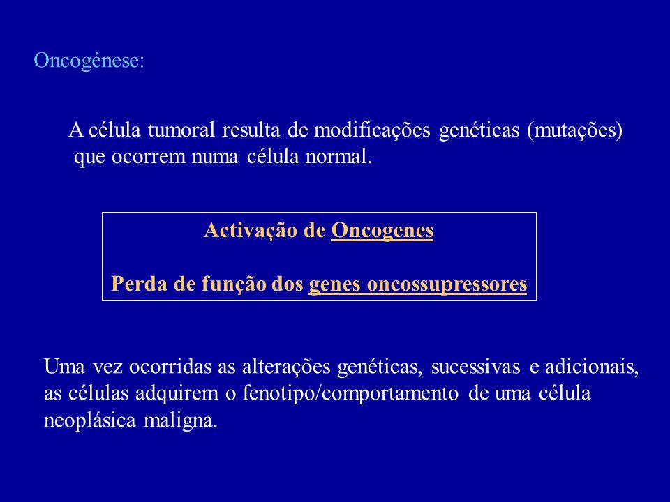 Activação de Oncogenes Perda de função dos genes oncossupressores