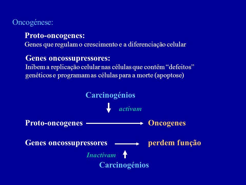 Genes oncossupressores: