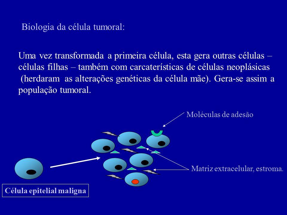 Biologia da célula tumoral:
