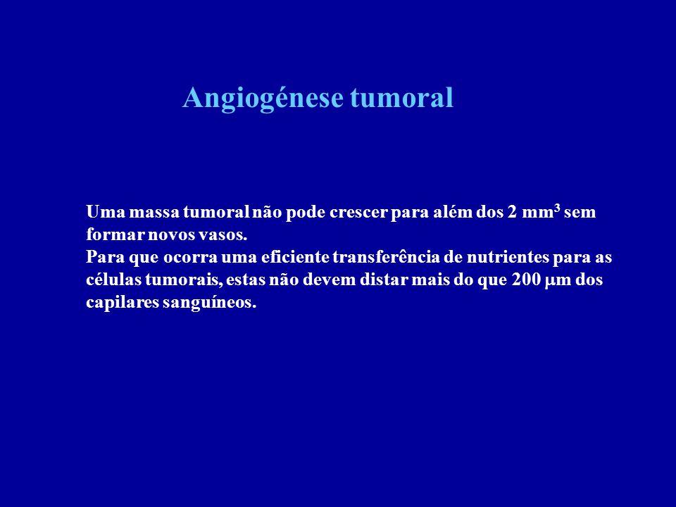 Angiogénese tumoral Uma massa tumoral não pode crescer para além dos 2 mm3 sem. formar novos vasos.