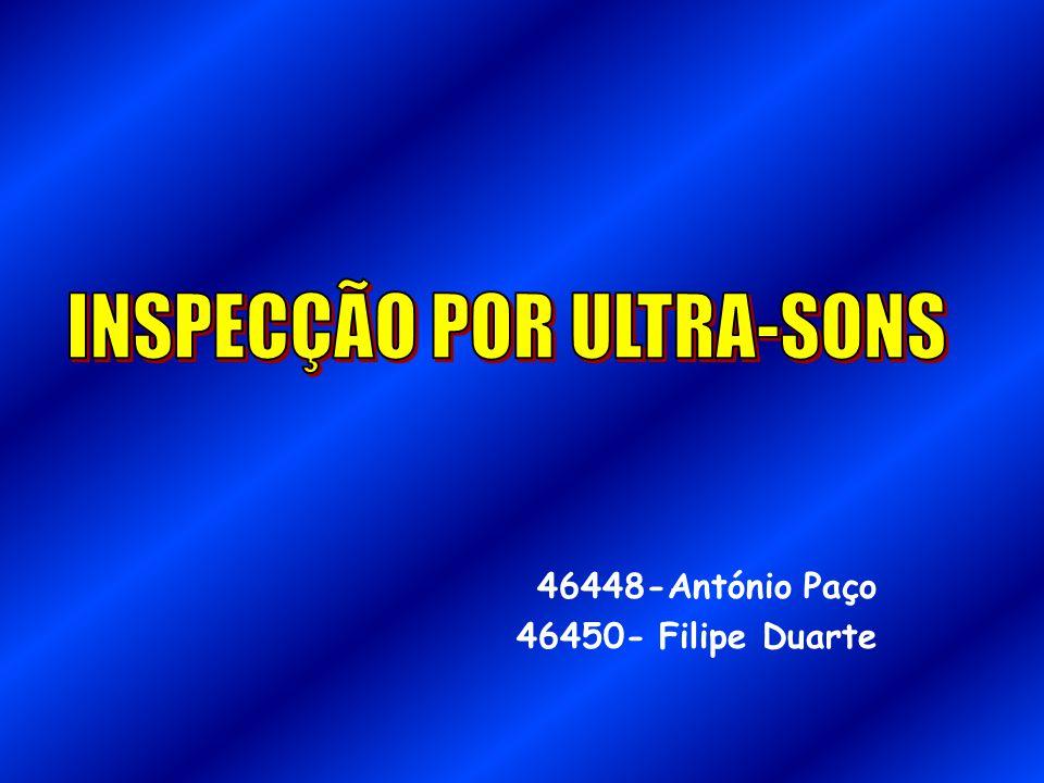 46448-António Paço 46450- Filipe Duarte