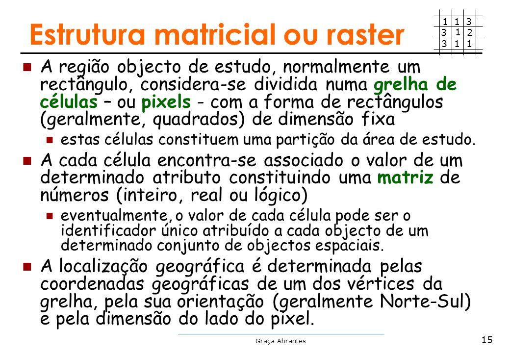 Estrutura matricial ou raster