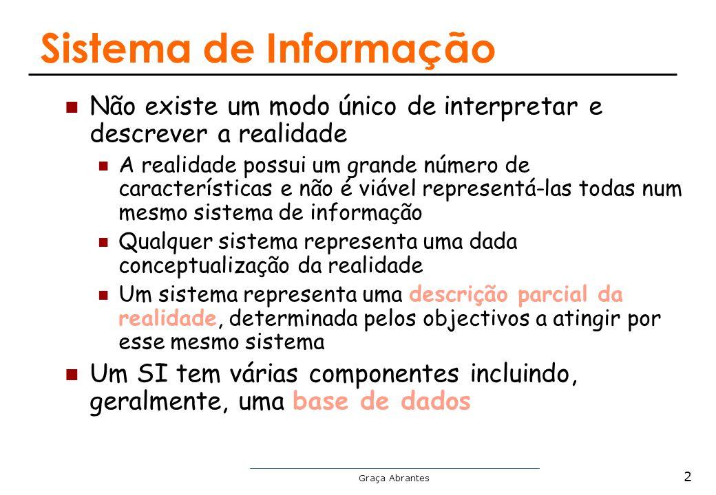 Sistema de Informação Não existe um modo único de interpretar e descrever a realidade.