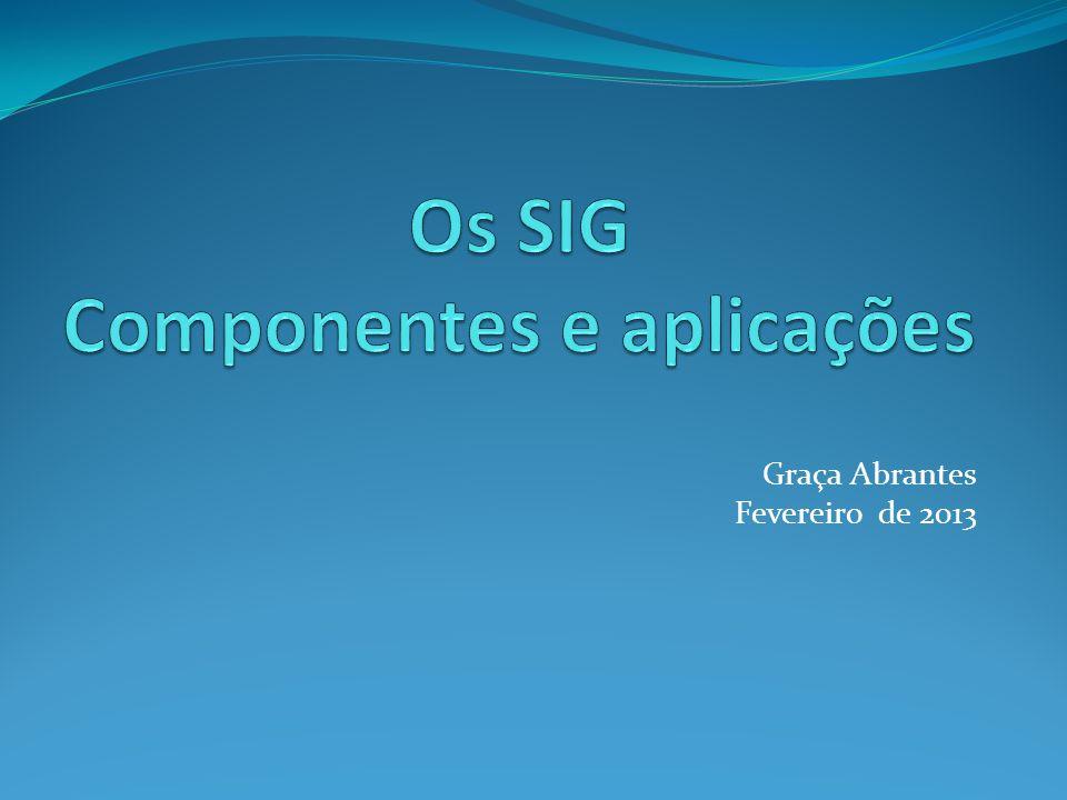 Os SIG Componentes e aplicações