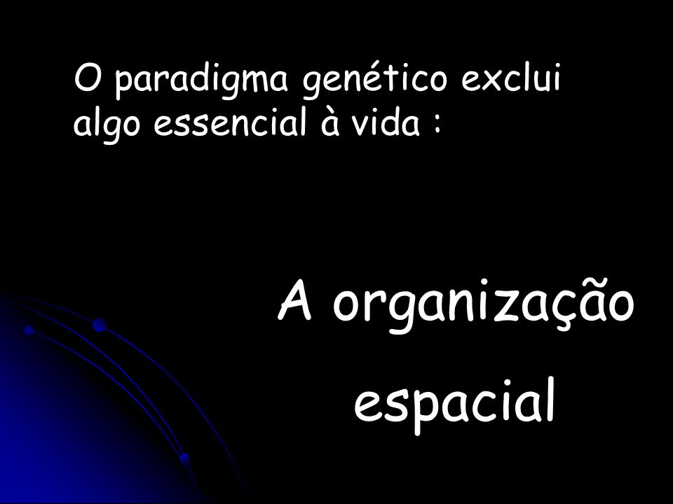 A organização espacial