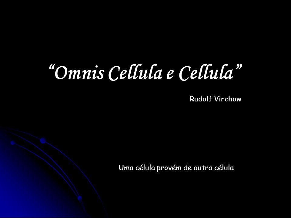 Omnis Cellula e Cellula