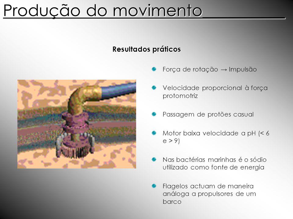 Produção do movimento__________