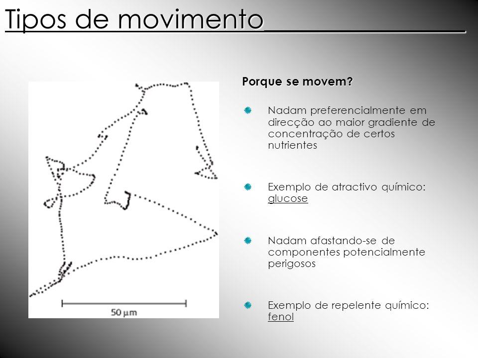Tipos de movimento_______________