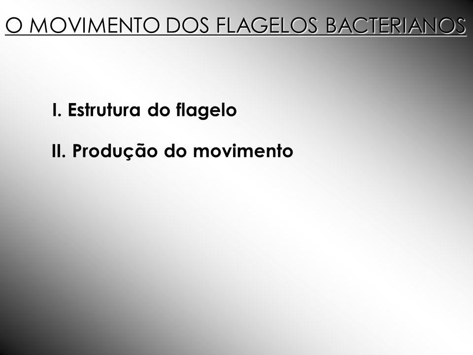 O MOVIMENTO DOS FLAGELOS BACTERIANOS
