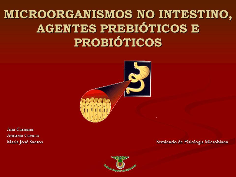 MICROORGANISMOS NO INTESTINO, AGENTES PREBIÓTICOS E PROBIÓTICOS