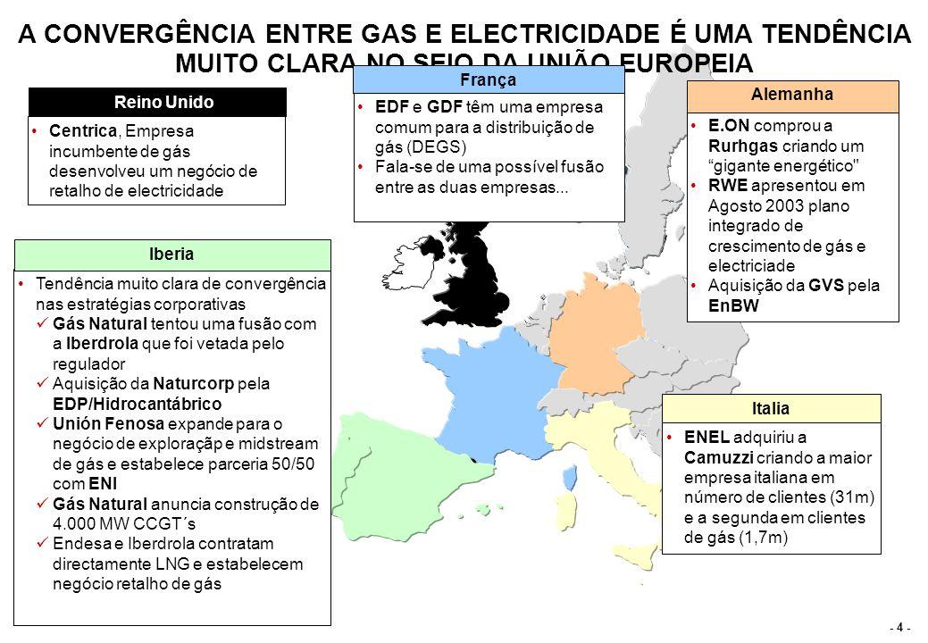 ESTRUTURA DO SECTOR DO GÁS DETERMINA OPÇÕES DE INTEGRAÇÃO