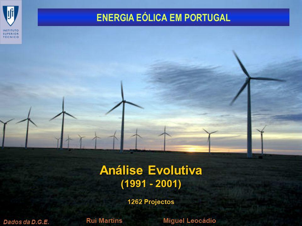 Análise Evolutiva (1991 - 2001) 1262 Projectos Miguel Leocádio