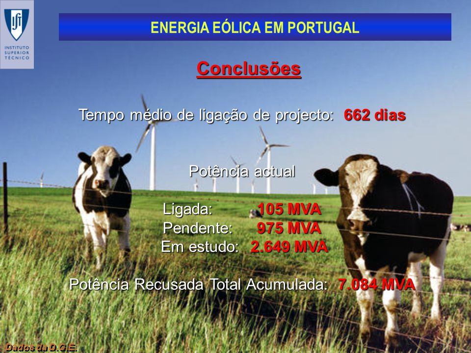 Conclusões Tempo médio de ligação de projecto: 662 dias