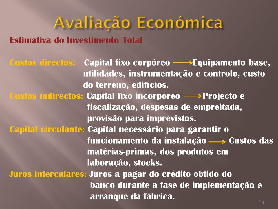 Avaliação Económica Estimativa do Investimento Total