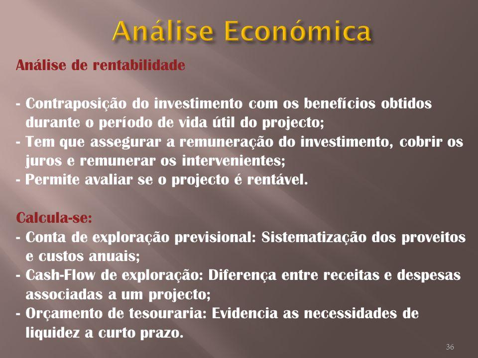 Análise Económica Análise de rentabilidade