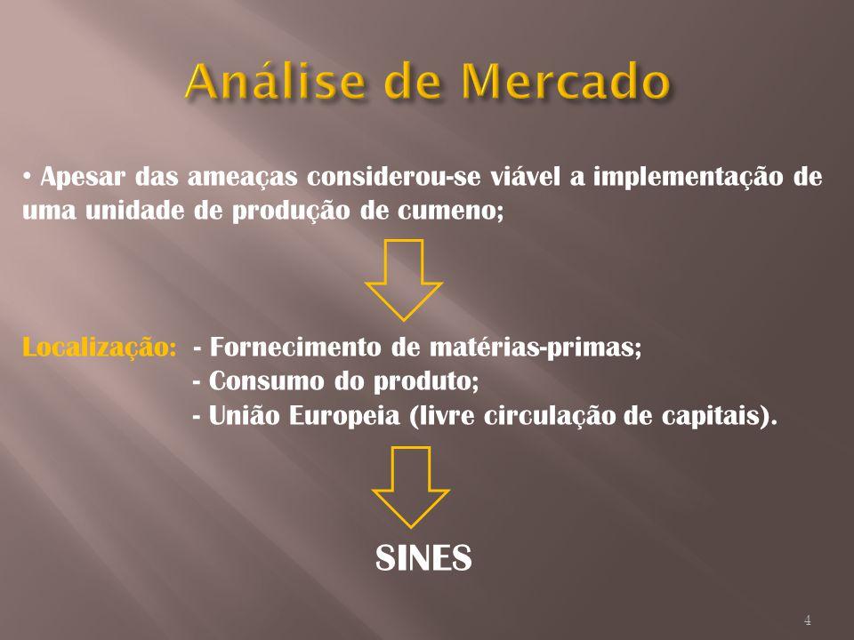 Análise de Mercado Apesar das ameaças considerou-se viável a implementação de uma unidade de produção de cumeno;