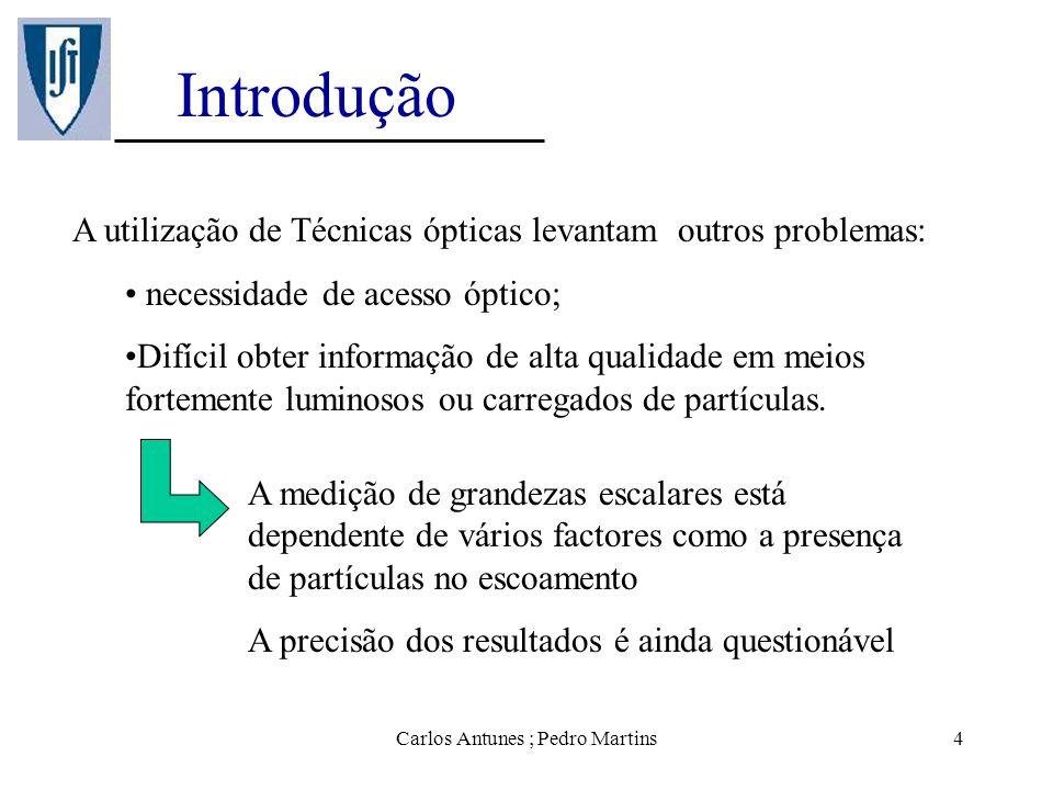 Carlos Antunes ; Pedro Martins