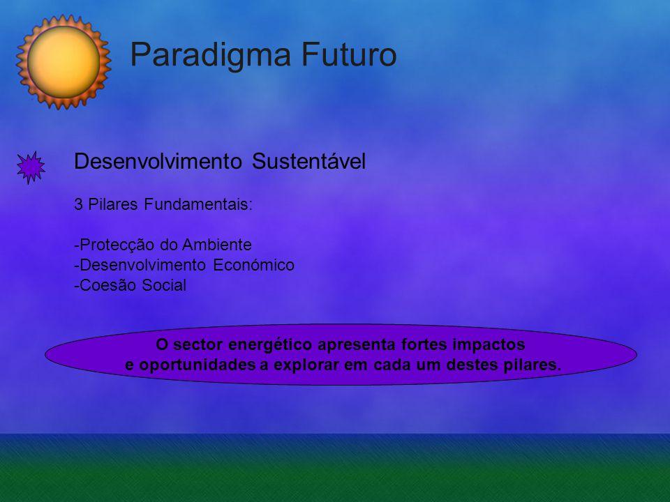 Paradigma Futuro Desenvolvimento Sustentável 3 Pilares Fundamentais: