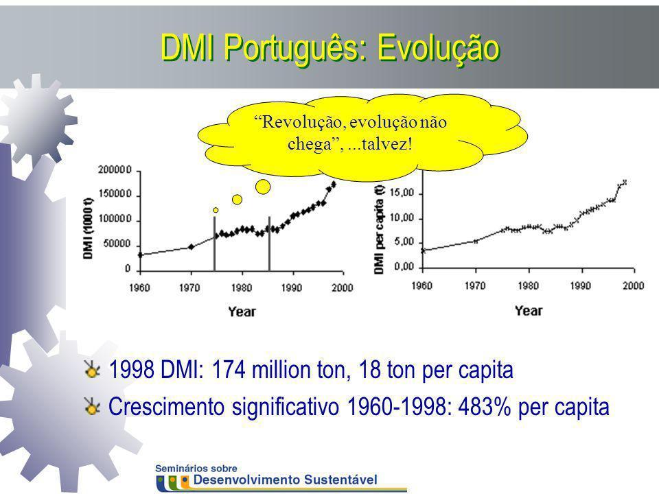 DMI Português: Evolução