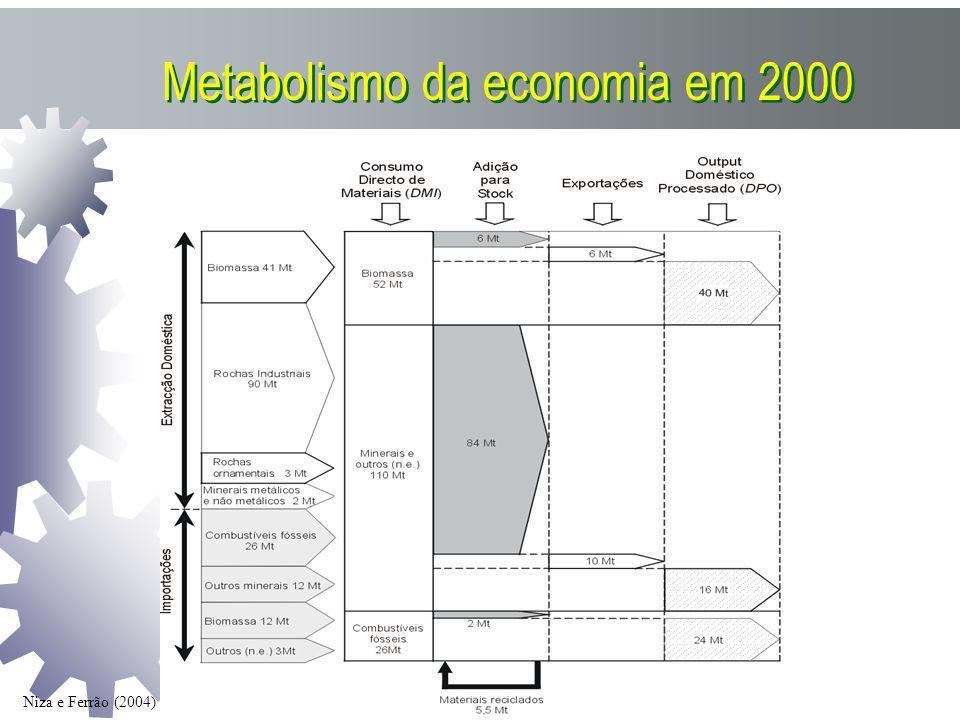 Metabolismo da economia em 2000