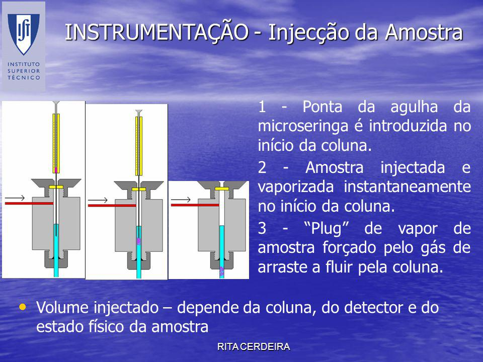 INSTRUMENTAÇÃO - Injecção da Amostra